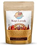 Monkey Business Coffee - Wild Kopi Luwak Coffee Whole Beans - Ethically Sourced - 250 Grams (Other...